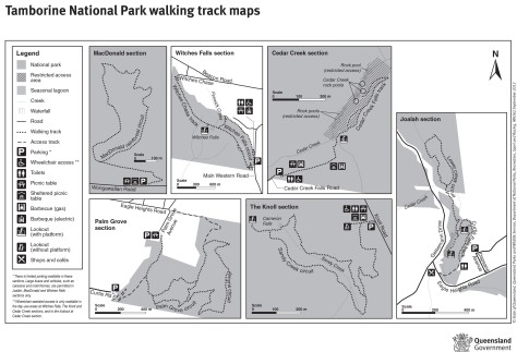 Tamborine National Park walking track map